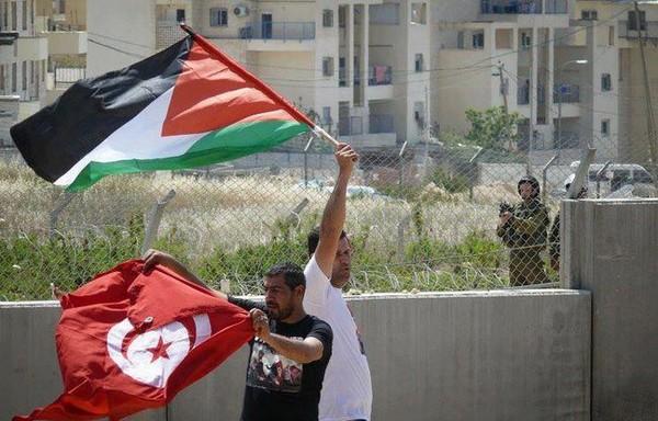 الشعب الفلسطيني الله محيي شعب تونس